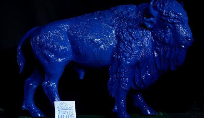 Frontier Middle Blue Buffalo